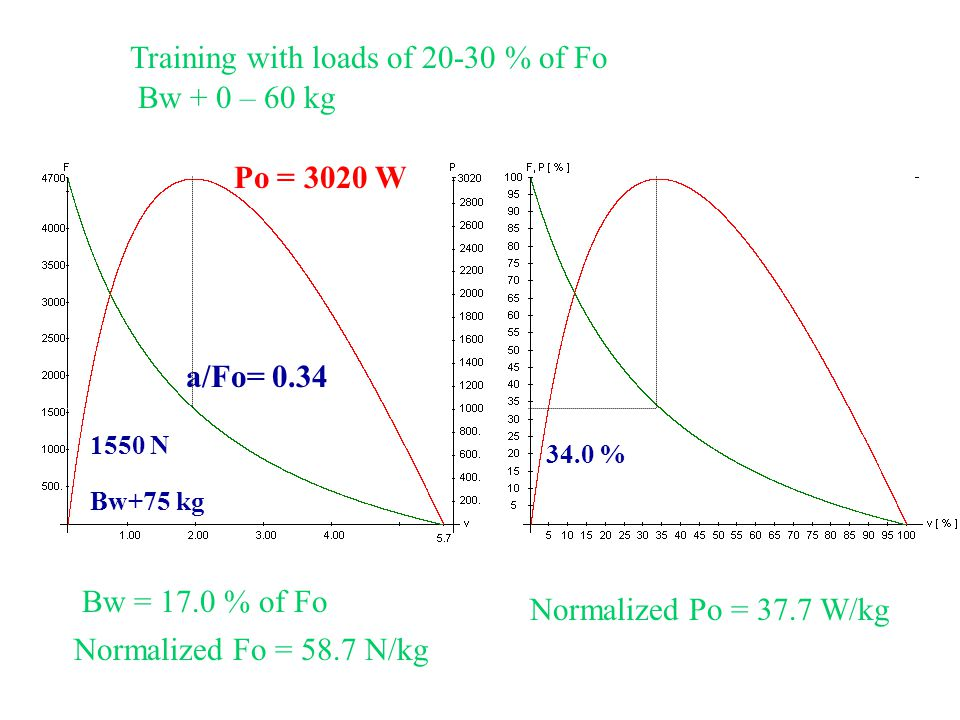 Training with loads of 20-30 % of Fo Bw + 0 – 60 kg