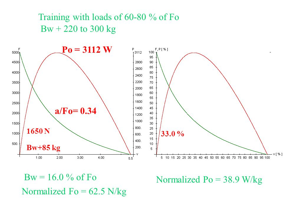 Training with loads of 60-80 % of Fo 9 Bw + 220 to 300 kg