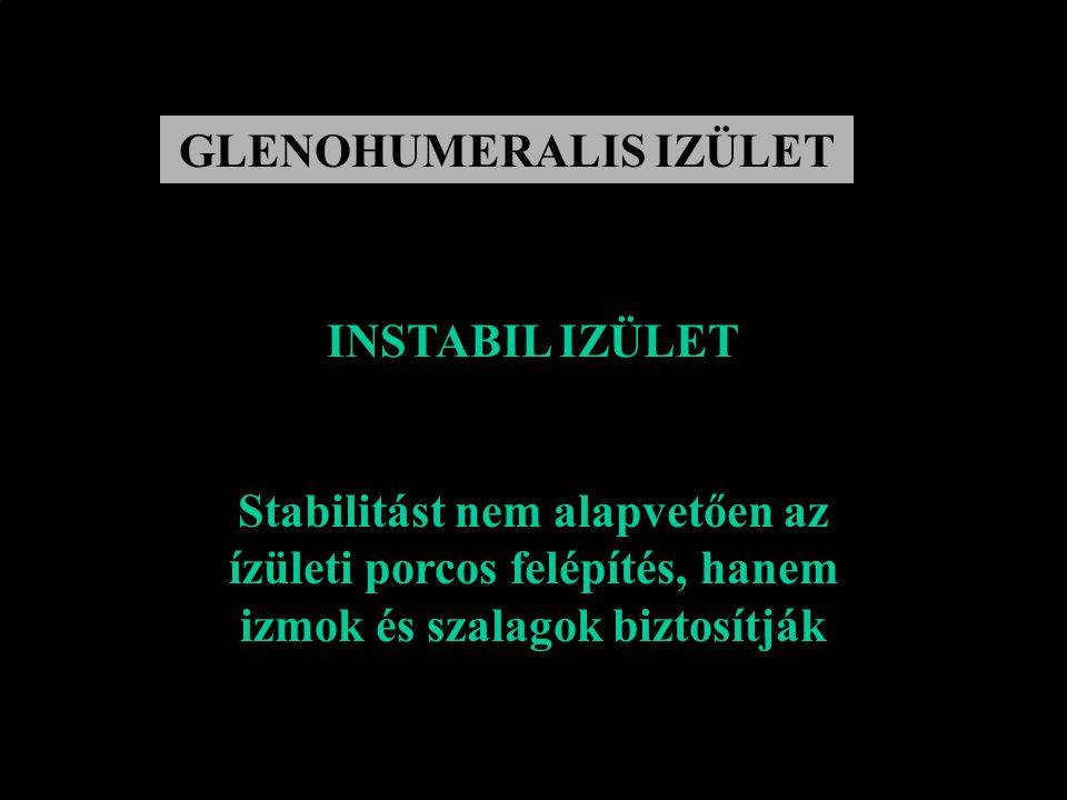 GLENOHUMERALIS IZÜLET