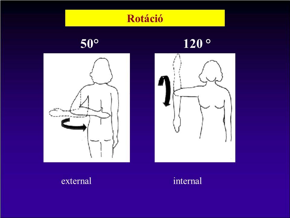 Rotáció 50° 120 ° external internal