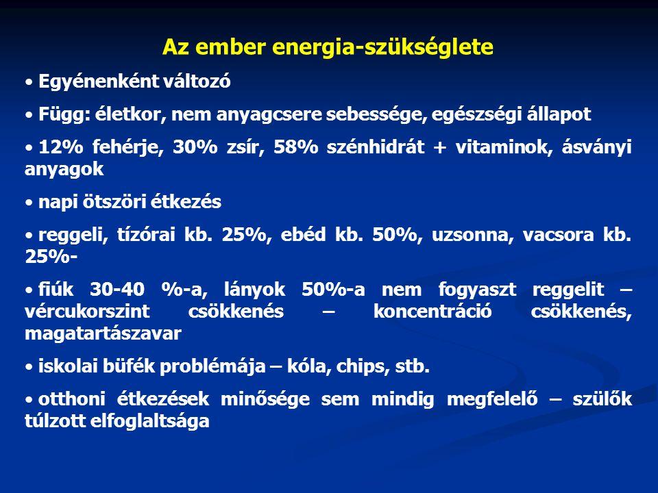 Az ember energia-szükséglete