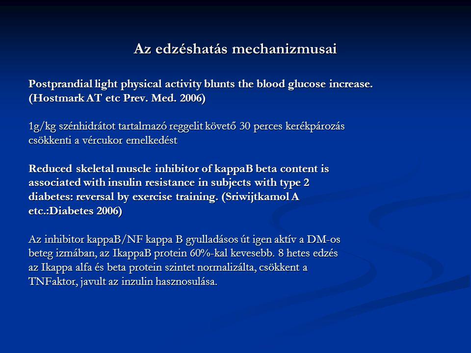 Az edzéshatás mechanizmusai