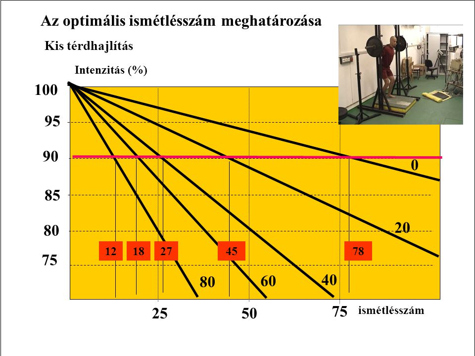 Az optimális ismétlésszám meghatározása