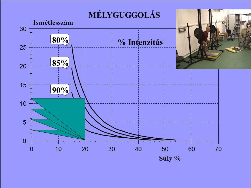 MÉLYGUGGOLÁS 80% % Intenzitás 85% 90% 95% Ismétlésszám Súly % 30 25 20