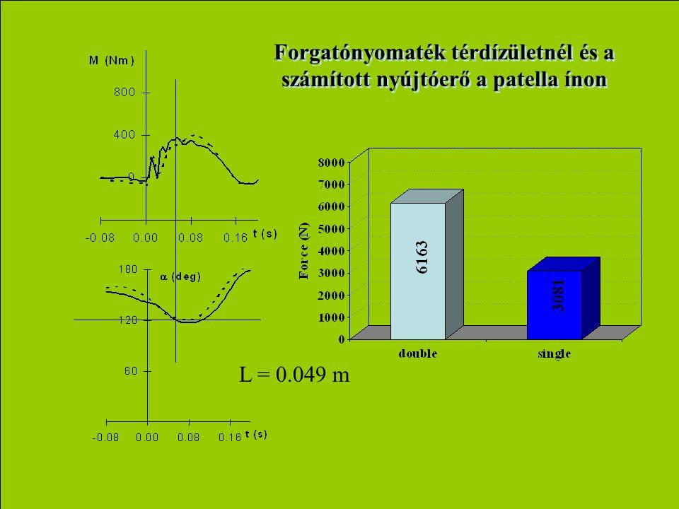 Forgatónyomaték térdízületnél és a számított nyújtóerő a patella ínon