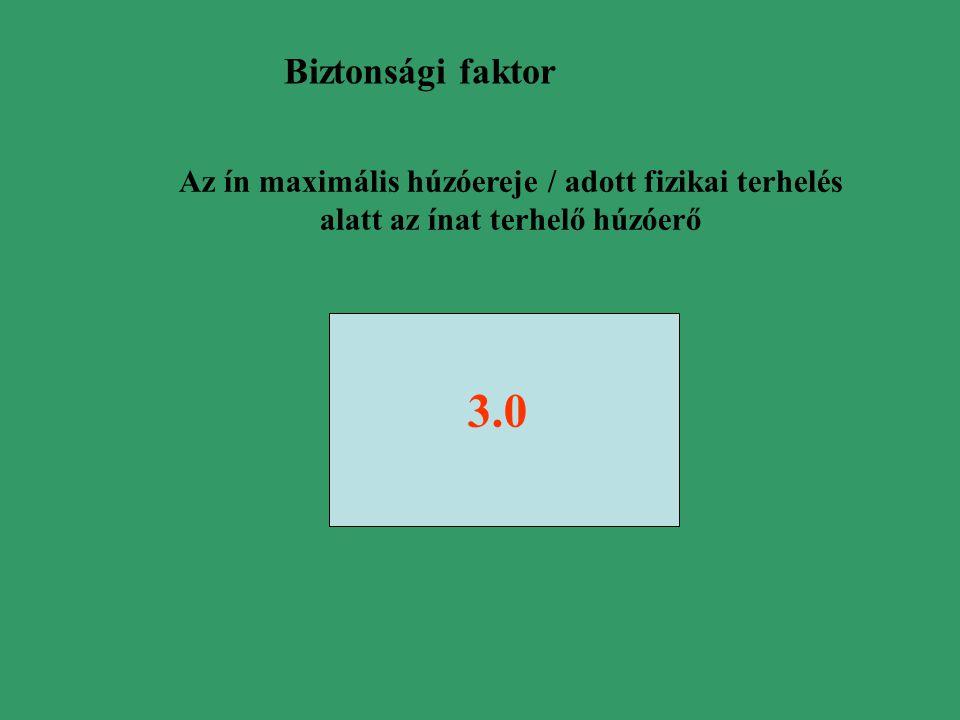 Biztonsági faktor Az ín maximális húzóereje / adott fizikai terhelés alatt az ínat terhelő húzóerő.