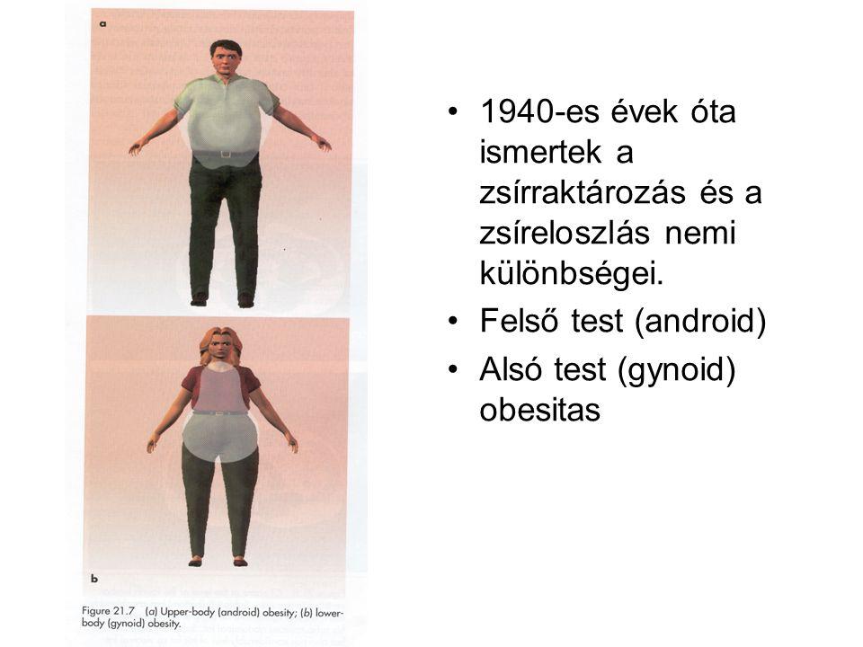 1940-es évek óta ismertek a zsírraktározás és a zsíreloszlás nemi különbségei.