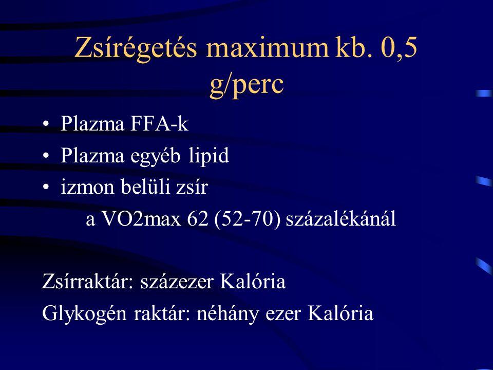 Zsírégetés maximum kb. 0,5 g/perc
