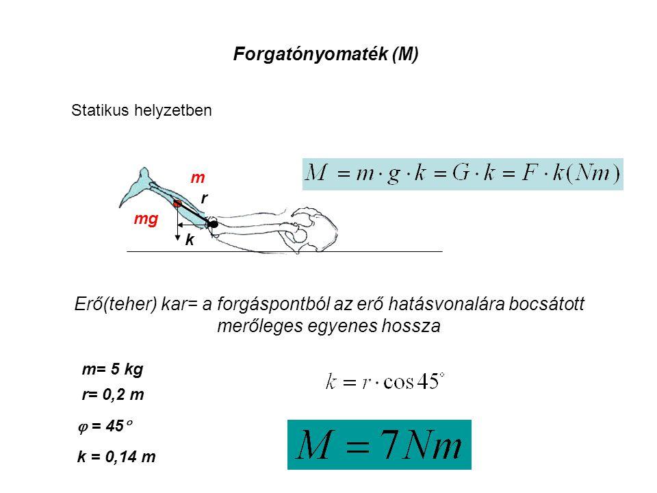 Forgatónyomaték (M) Statikus helyzetben. m. r. mg. k. Erő(teher) kar= a forgáspontból az erő hatásvonalára bocsátott merőleges egyenes hossza.