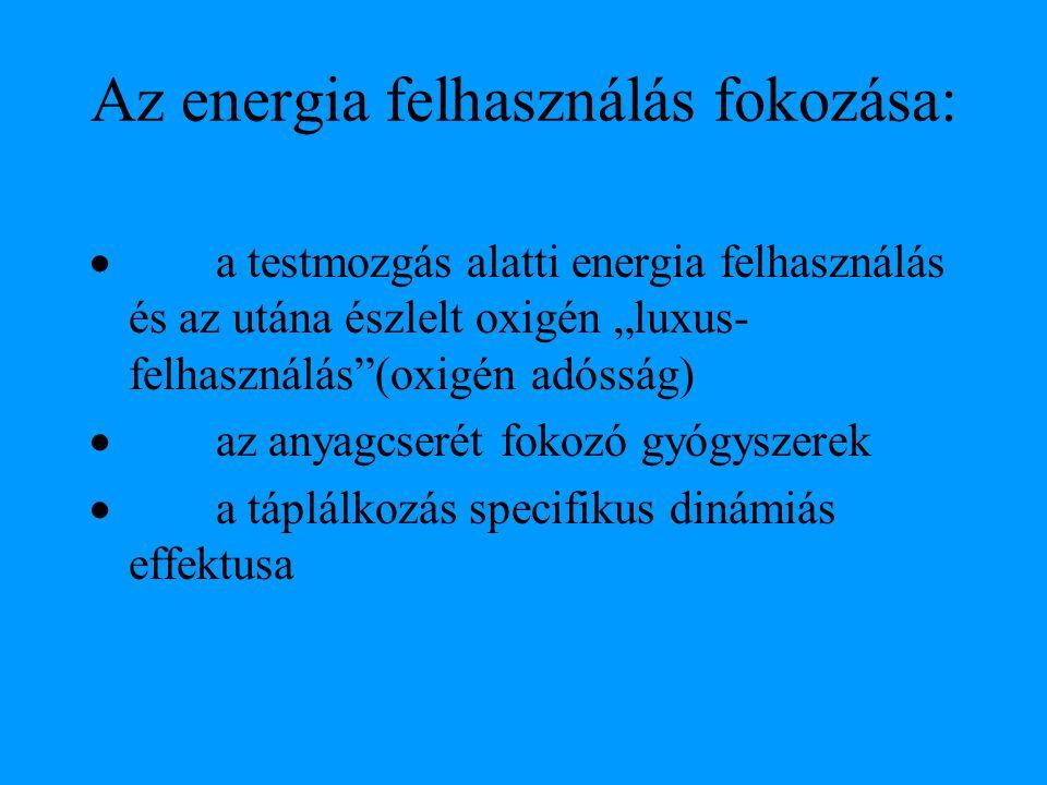 Az energia felhasználás fokozása: