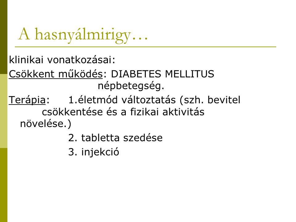 A hasnyálmirigy… klinikai vonatkozásai: