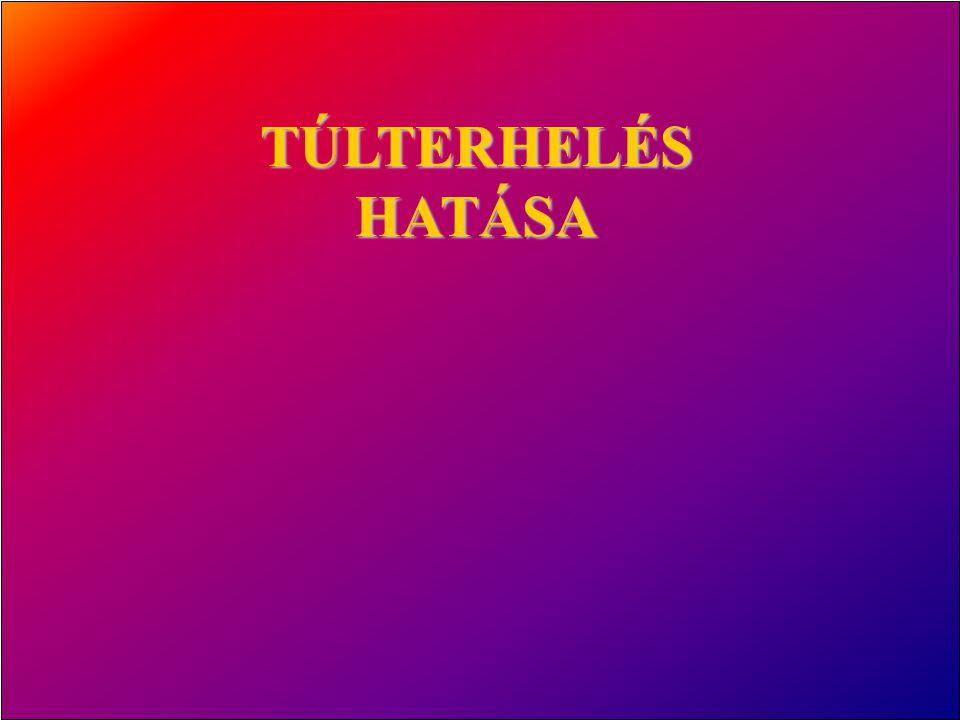 TÚLTERHELÉS HATÁSA