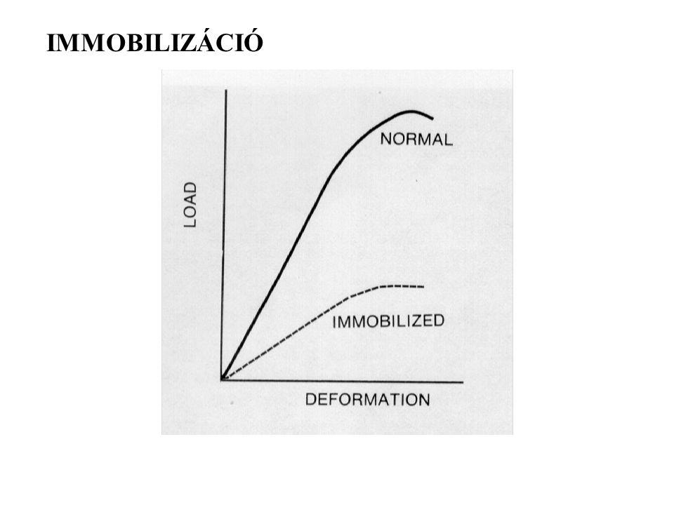 IMMOBILIZÁCIÓ