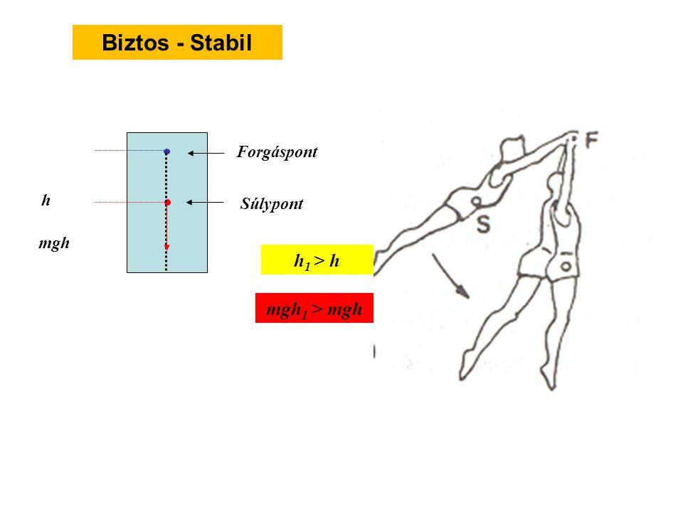 Biztos - Stabil Forgáspont h1 h Súlypont mgh h1 > h mgh1 > mgh