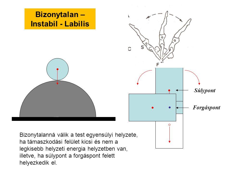 Bizonytalan – Instabil - Labilis