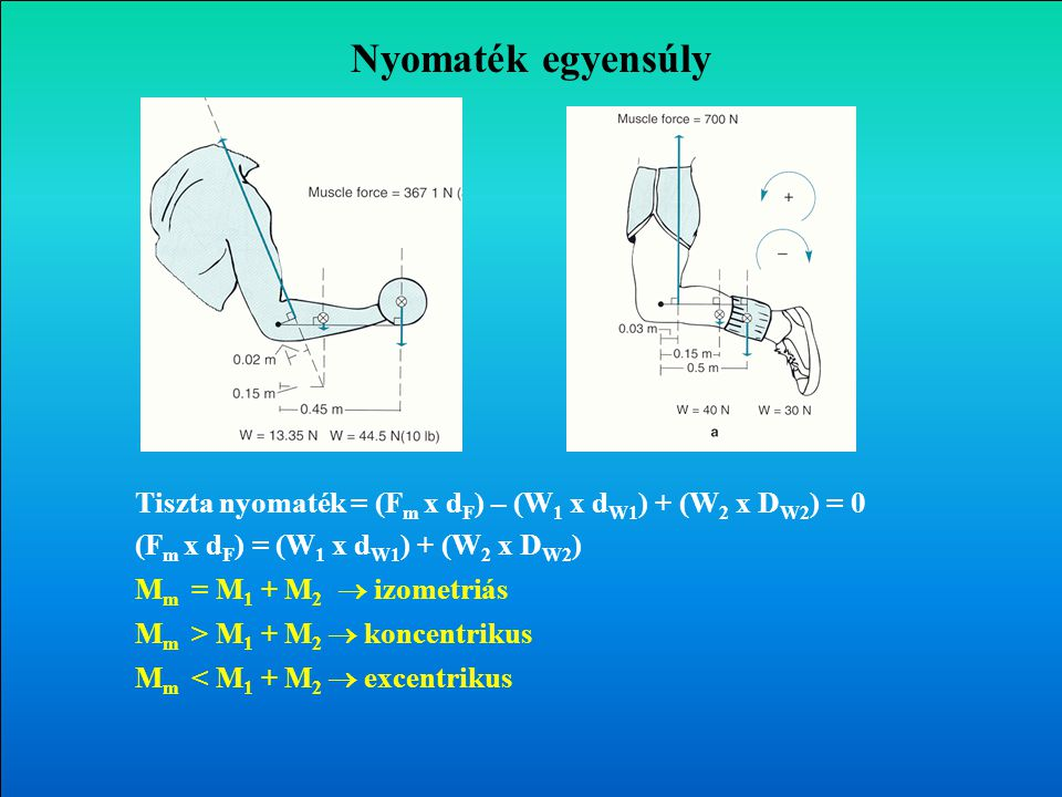 Nyomaték egyensúly Tiszta nyomaték = (Fm x dF) – (W1 x dW1) + (W2 x DW2) = 0. (Fm x dF) = (W1 x dW1) + (W2 x DW2)