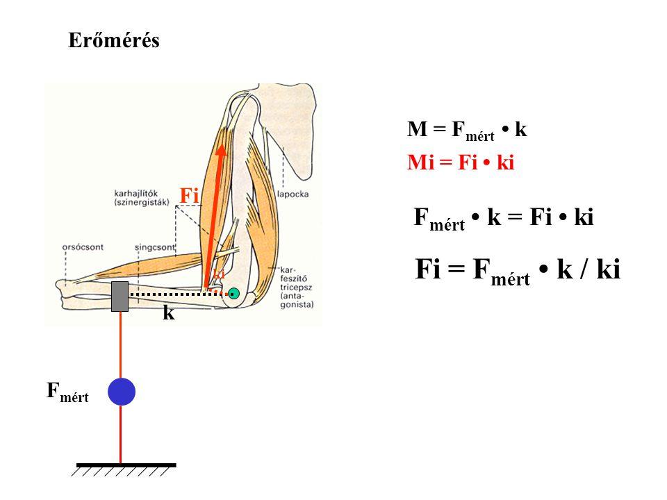 Fi = Fmért • k / ki Fmért • k = Fi • ki Erőmérés M = Fmért • k