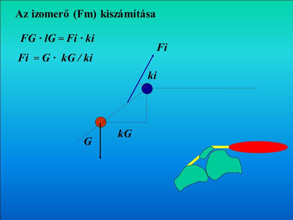 Az izomerő (Fm) kiszámítása