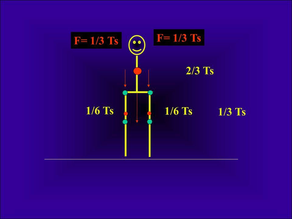 F= 1/3 Ts F= 1/3 Ts 2/3 Ts 1/6 Ts 1/6 Ts 1/3 Ts