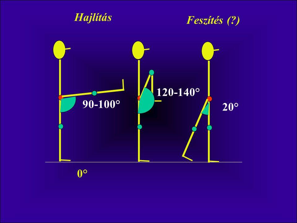 Hajlítás Feszítés ( ) 120-140° 90-100° 20° 0°