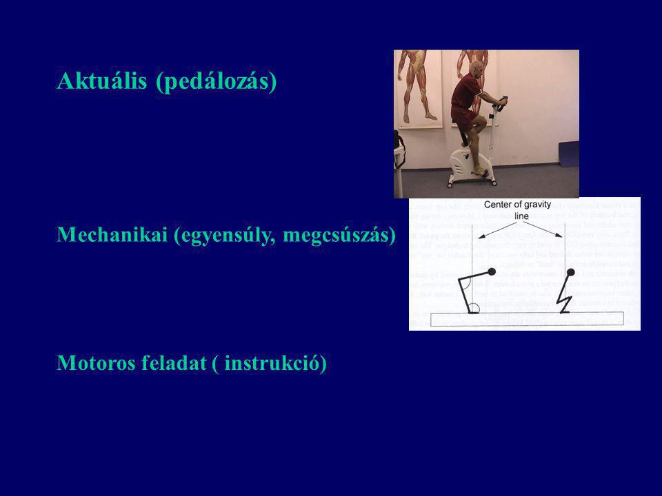Aktuális (pedálozás) Mechanikai (egyensúly, megcsúszás)