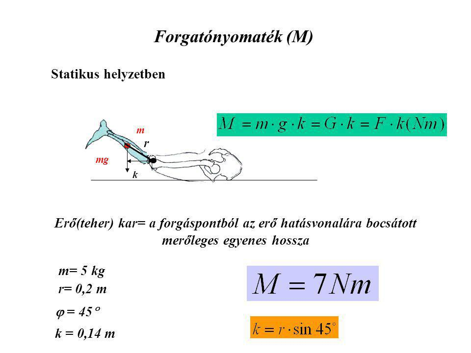 Forgatónyomaték (M) Statikus helyzetben