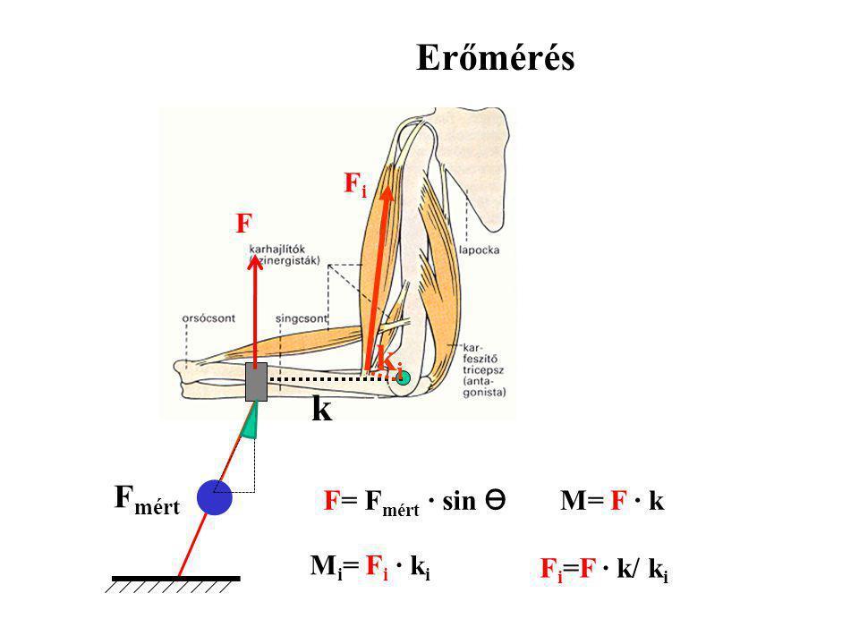 Erőmérés ki k Fmért Fi F F= Fmért · sin ϴ M= F · k Mi= Fi · ki