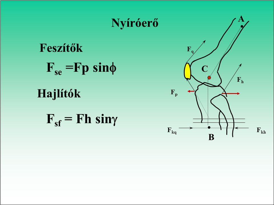 Fse =Fp sinf Fsf = Fh sin Nyíróerő Feszítők Hajlítók A C B Fq Fkq Fh