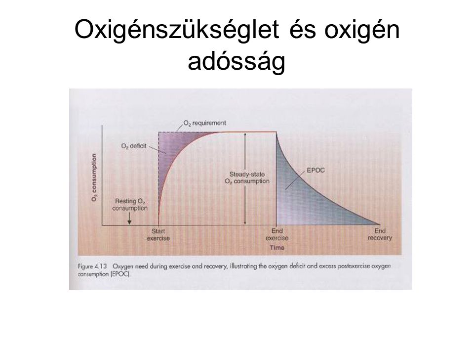 Oxigénszükséglet és oxigén adósság