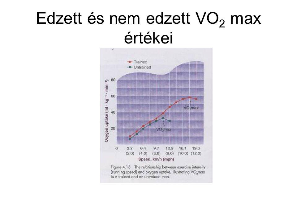 Edzett és nem edzett VO2 max értékei