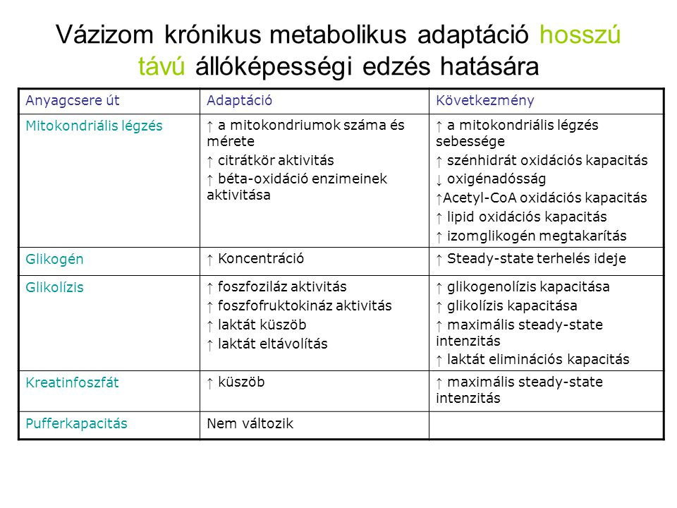 Vázizom krónikus metabolikus adaptáció hosszú távú állóképességi edzés hatására