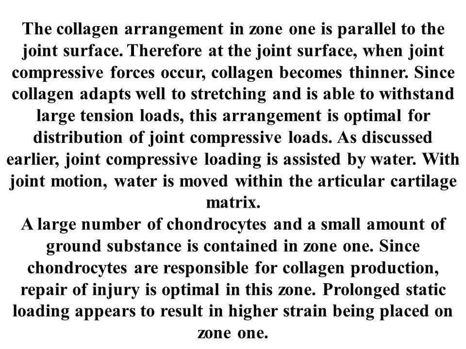 The collagen arrangement in zone one is parallel to the joint surface