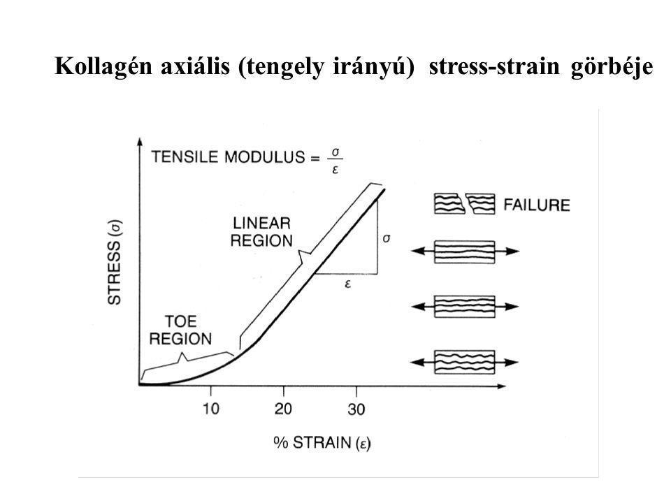 Kollagén axiális (tengely irányú) stress-strain görbéje