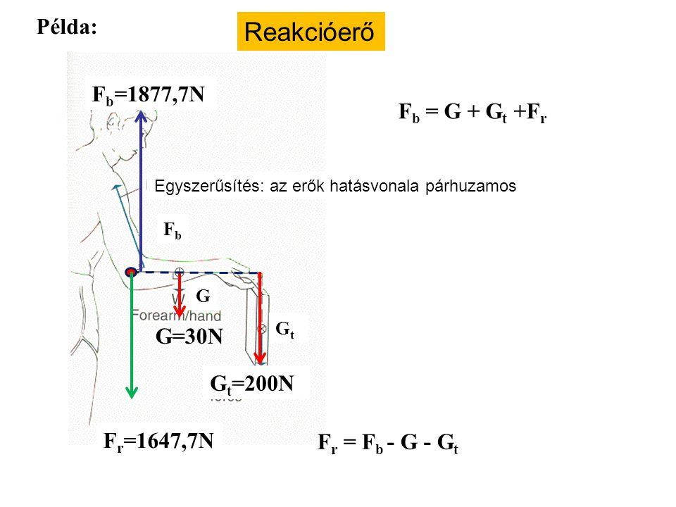 Reakcióerő Példa: Fb=1877,7N Fb = G + Gt +Fr G=30N Gt=200N Fr=1647,7N