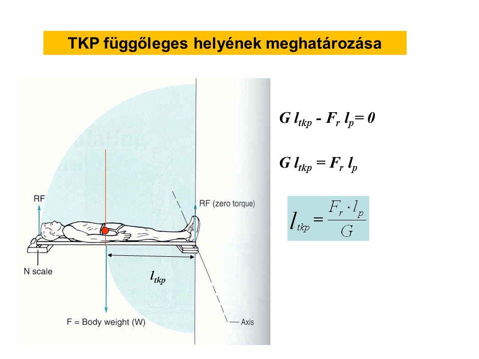 TKP függőleges helyének meghatározása
