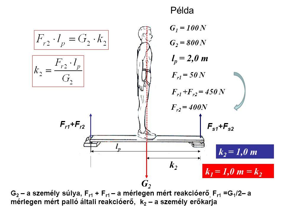 Példa lp = 2,0 m k2 = 1,0 m k2 k1 = 1,0 m = k2 G2 G1 = 100 N