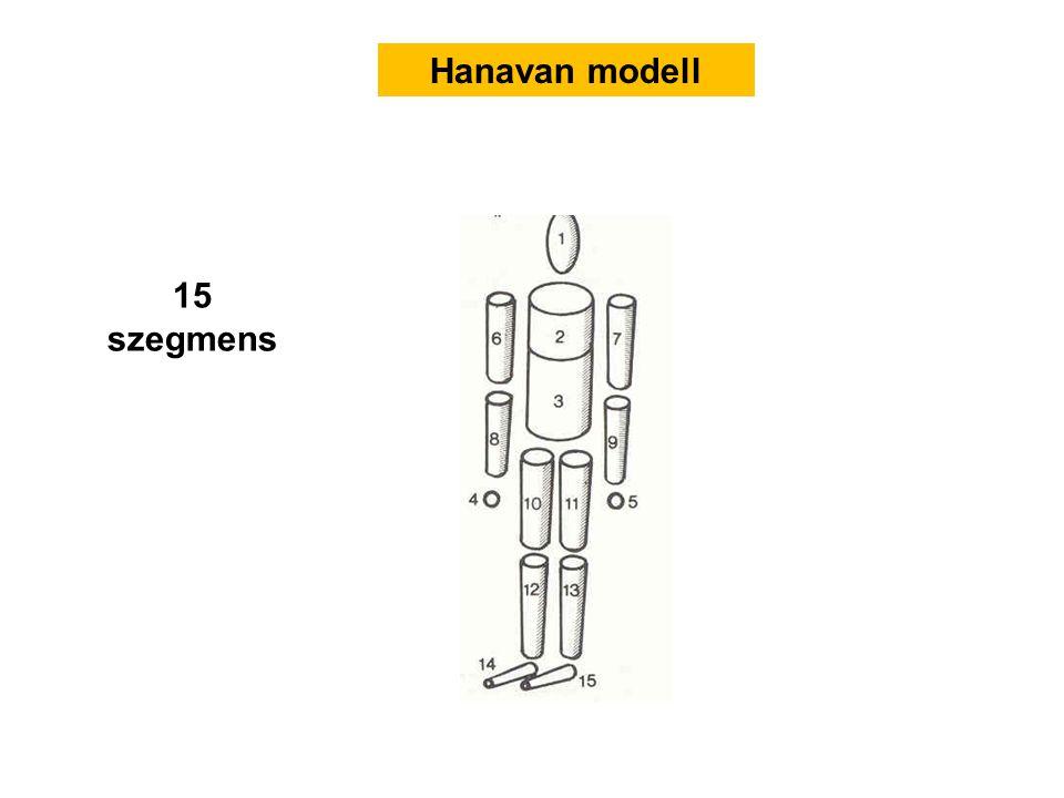 Hanavan modell 15 szegmens