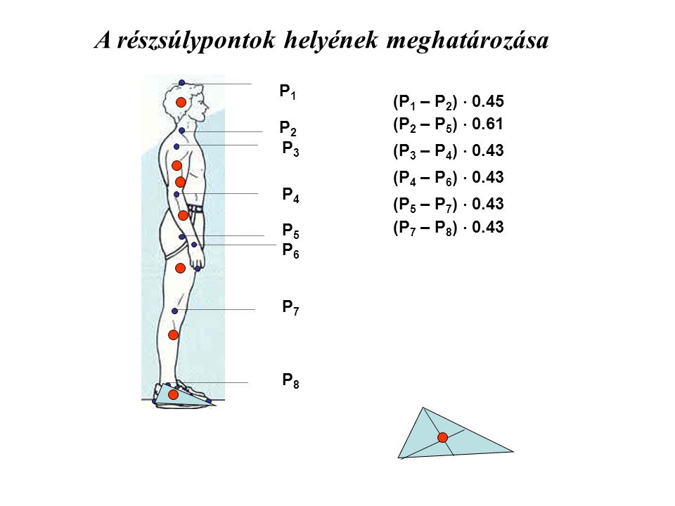A részsúlypontok helyének meghatározása