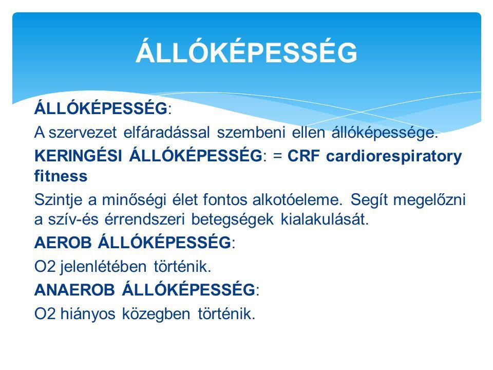 ÁLLÓKÉPESSÉG