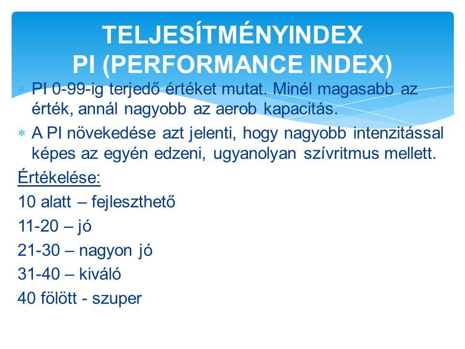 TELJESÍTMÉNYINDEX PI (PERFORMANCE INDEX)