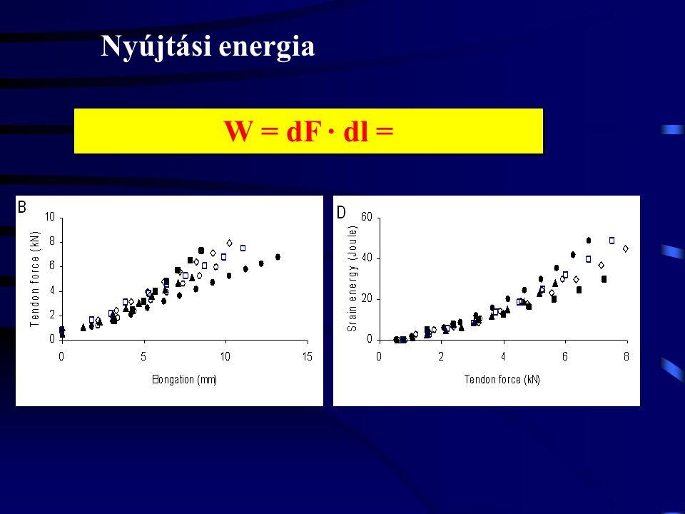 Nyújtási energia W = dF · dl =
