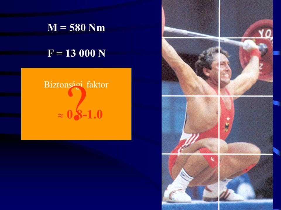 M = 580 Nm F = 13 000 N Biztonsági faktor  0.8-1.0