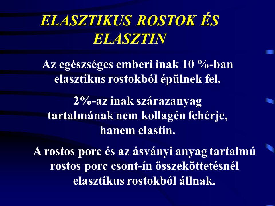 ELASZTIKUS ROSTOK ÉS ELASZTIN