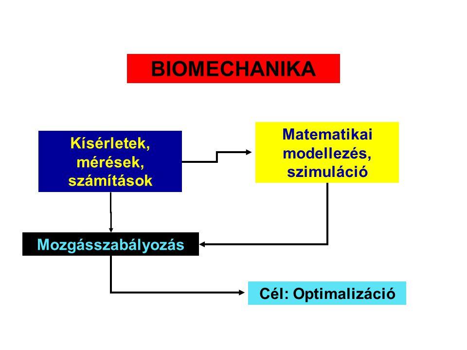 Matematikai modellezés, szimuláció Kísérletek, mérések, számítások