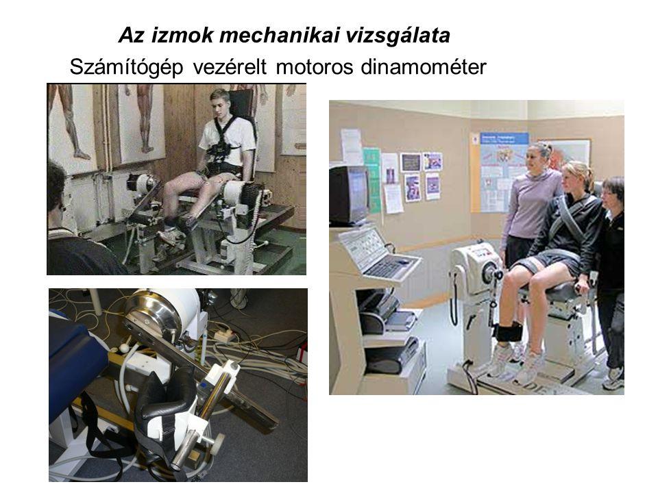 Az izmok mechanikai vizsgálata