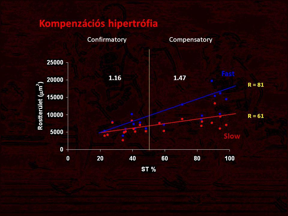 Kompenzációs hipertrófia