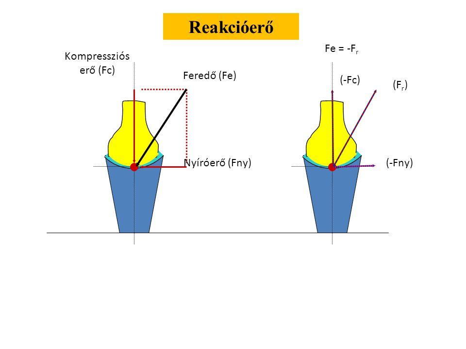 Reakcióerő Fe = -Fr Kompressziós erő (Fc) Feredő (Fe) (-Fc) (Fr)