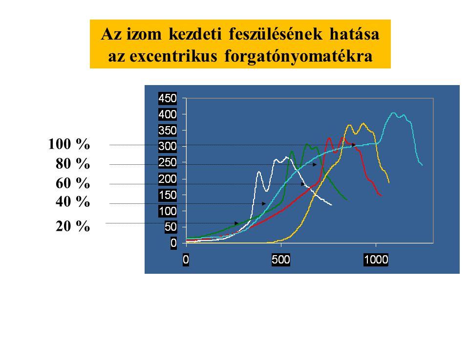 Az izom kezdeti feszülésének hatása az excentrikus forgatónyomatékra