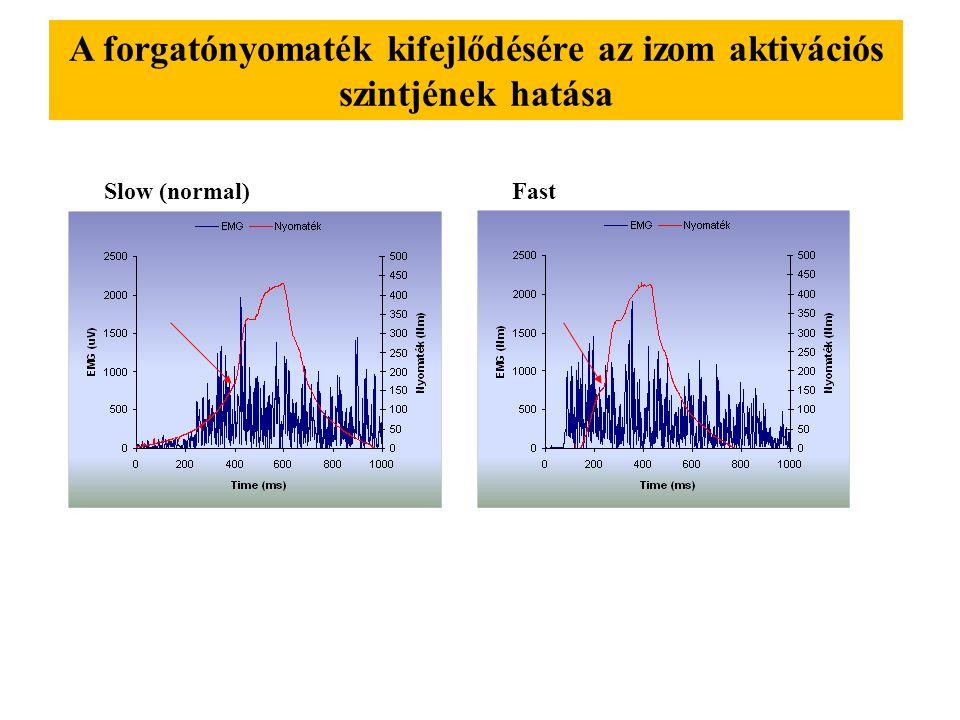 A forgatónyomaték kifejlődésére az izom aktivációs szintjének hatása