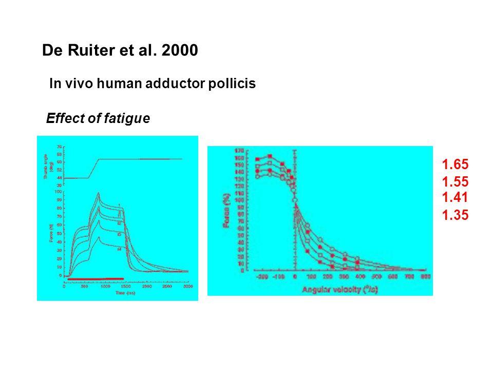De Ruiter et al. 2000 In vivo human adductor pollicis